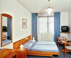 hotel-dalimil_room