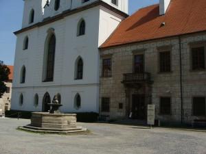 gaardmiljoe ved Basilika trebic