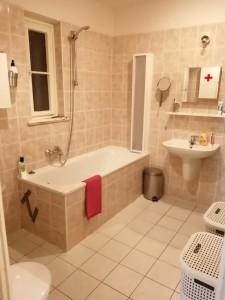 prag lokal lejlighed badevaerelse